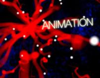 Showreel 2011 - Animations