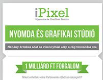 iPixel infigraphic design 2013