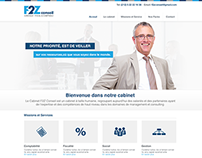 F2z conseil website design