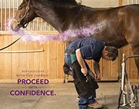 CEVA Confidence EQ Campaign