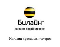 Create a website for online store Beeline Shopsim52.ru