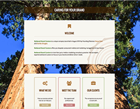 WordPress Design for Redwood Brand Curators