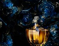 Perfumes serie. Set design flowers Haruna OGATA.