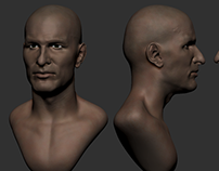 Zinedine Zidane STUDY HEAD