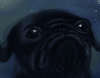 Black pug with bubble