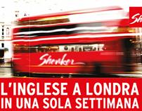 Branding -  Shenker