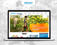 Content Management Wrigley Spain