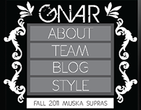 Web Site Design - Gnar Skate Team