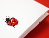 Coccinellidae: Ladybug Accordion Book