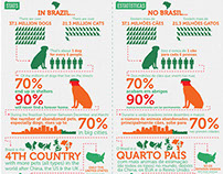 Infographic | ISF Brazil