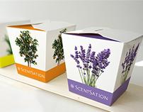 ScentSation - Scented Pots