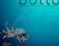 Editorial spreads on underwater sea creatures