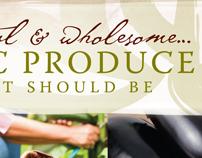 Wholesum Harvest Branding