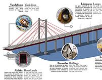 Infográfico - Puente la Amistad