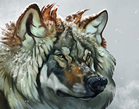 Wolf sketch with video