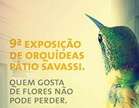 Exposição de Orquídeas - Shopping Pátio Savassi