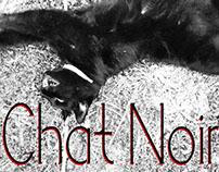 Chat Noir | Typeface