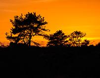 Sunset on Morro Bay, Morro Bay State Park, California
