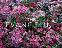 """Discovery Theme"" from The Evangeline (excerpt) #100"