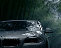BMW 5 Series Li - Directors Cut