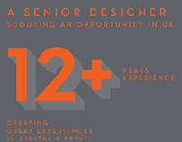 Senior Designer scouting an opportunity in UK
