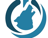 Lobosoft - Logo Design