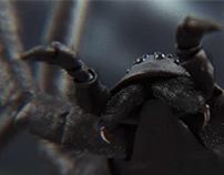 Spyder Brand ID (2012)