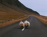 Iceland I
