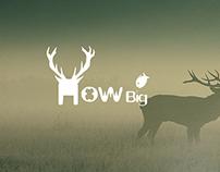 Howbig logo