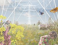 Ecological Energy Network