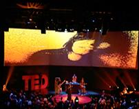 TED Rio de Janeiro 2014