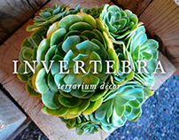 Invertebra ® Terrarium Décor