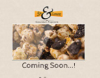 5th & Lenox Coming Soon Webpage