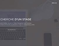 Website Resume - CV