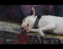 Hangover Sunday Session - Milano - Poter X Mac?C