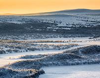 Talvi | Winter