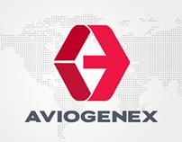 Aviogenex Redesign Concept