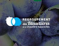 Regroupement des bleuetières de la Chaudière-Appalaches