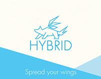 Hybrid Project