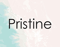 Pristine | Development and Design Guidelines