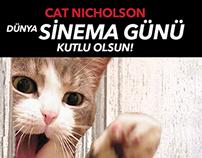 Cat Nicholson - Shining