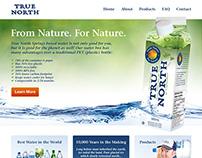 True North Website Design and Development