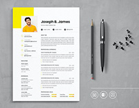 Professional CV Resume