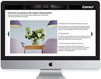 Micrositio Comex/Vinimex