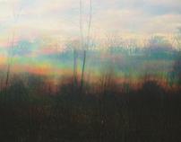 cold grass
