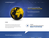 E-marketingexperts.com - landing page