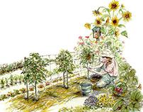 Mother Earth News, Lead Illustration