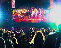 Cornell Homecoming Light Show 2014