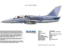 Skyline Aviation Aero L39E Albatros