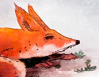 Fox & Snow